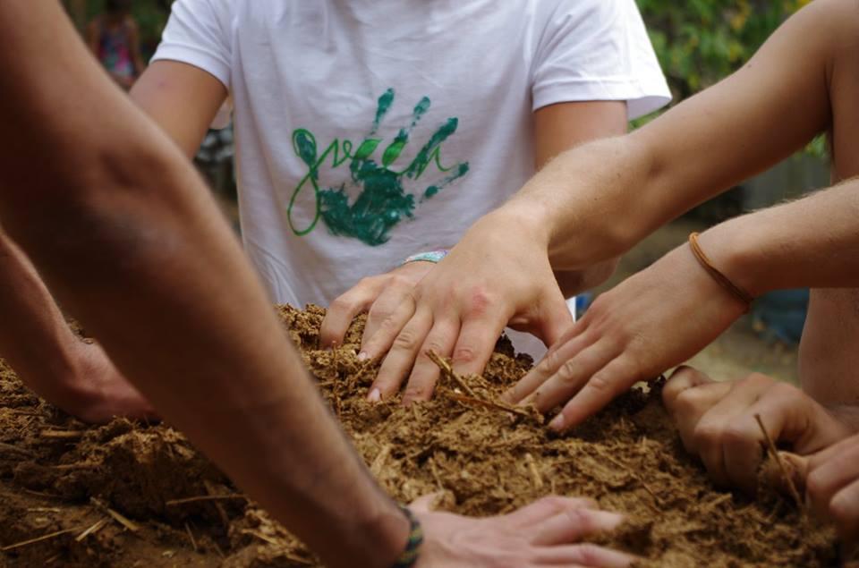 Зелен сбор